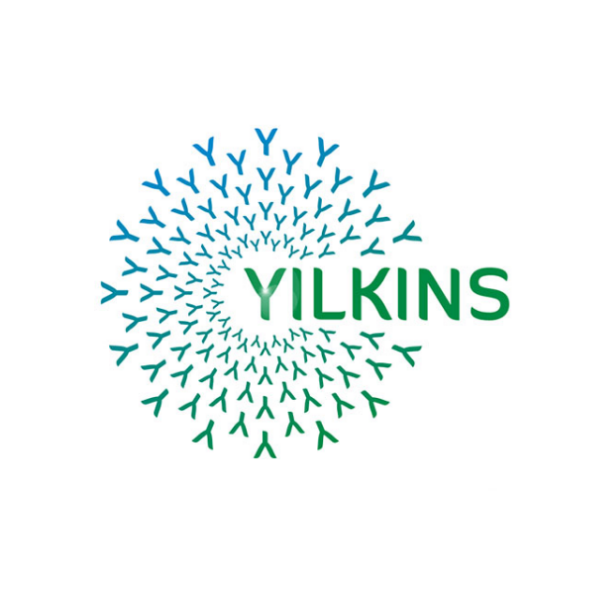 Logo Yilkins